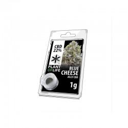 Blue Cheese 22% CBD Jelly...