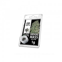 Critical Mass 22% CBD Jelly...