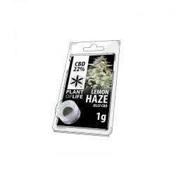 Lemon Haze 12% CBD Solid CBD Lab 1gr