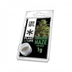 Amnesia Haze 12% CBD Solid Plant of Life 1gr