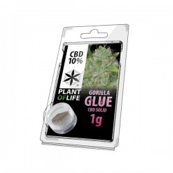 Gorilla Glue 10% CBD Solid Plant of Life 1gr