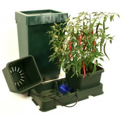 Easy2grow XL - Deposito 47L Green Autopot