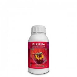 Bloom Explosion - Kayasolutions