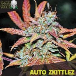 Auto Zkittlez - Autoflorecientes - Black Skull Seeds