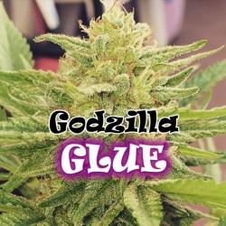 Godzilla Glue - Feminizadas - Dr Underground