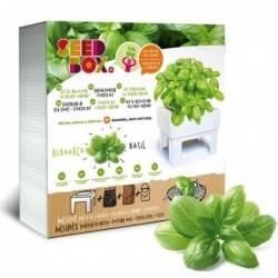 SeedBox Cultívame Albahaca
