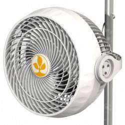 Monkey Fan 30W R1.00 Secret jardin