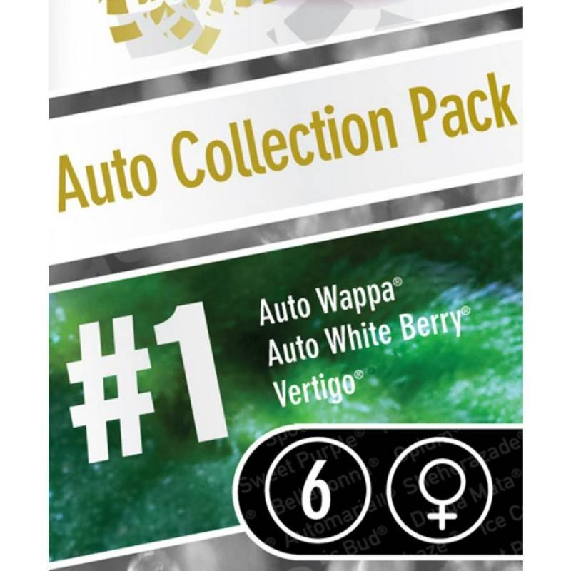 Auto Collection pack nº1