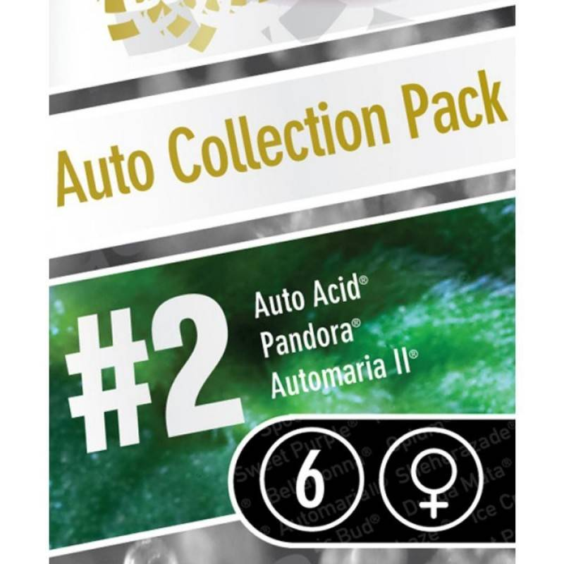 Auto Collection pack nº2
