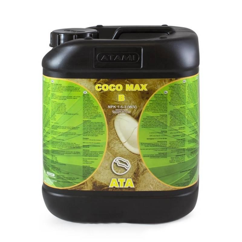 ATA Coco Max B