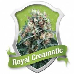 Royal Creamatic