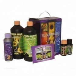 Bloombastic box Ata/Terra